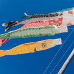 【磐田市】の4月のイベント、見どころ情報(つつじ公園のつつじ、見付のこいのぼり、池田の熊野の長藤)