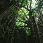 【遠州七不思議】静岡県に伝わる七つの不思議な物語【シリーズ】