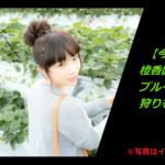 【磐田市】ブルーベリー食べ放題〈橙香園〉とうこうえん