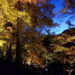 【BLOG】遠州まっぷyusukeブログ IN紅葉スポット香嵐渓!